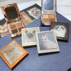 愛され猫の愛されメイク🐱 ヴィーナスマーブル アイシャドウパレット キャトシリーズが入荷致しました♡